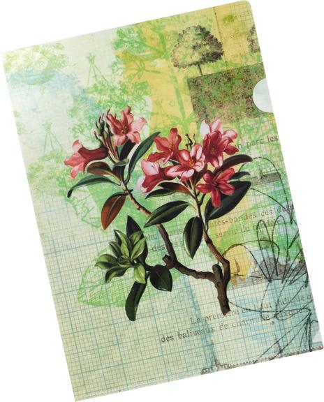 sichthülle, gerstenberg, papeterie, schreibwaren, blume, Rhododendron, azalee