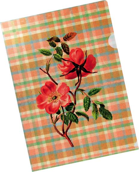 sichthülle, gerstenberg, papeterie, schreibwaren, rose, heckenrose