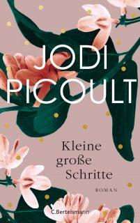 jodi picoult, kleine große schritte